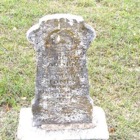 JONES, ELBERT ALDEN - Rusk County, Texas | ELBERT ALDEN JONES - Texas Gravestone Photos