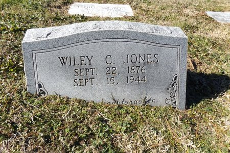 JONES, WILEY C - Rusk County, Texas   WILEY C JONES - Texas Gravestone Photos
