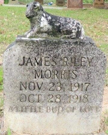 MORRIS, JAMES RILEY - Rusk County, Texas | JAMES RILEY MORRIS - Texas Gravestone Photos