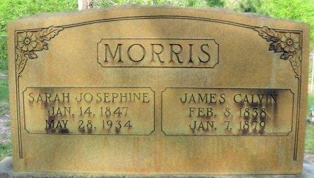 MARCHMAN MORRIS, SARAH JOSEPHINE - Rusk County, Texas | SARAH JOSEPHINE MARCHMAN MORRIS - Texas Gravestone Photos