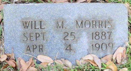 MORRIS, WILL M. - Rusk County, Texas | WILL M. MORRIS - Texas Gravestone Photos