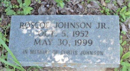 JOHNSON, JR., ROSCOE - San Jacinto County, Texas | ROSCOE JOHNSON, JR. - Texas Gravestone Photos