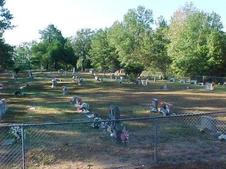 *PATROON OVERVIEW,  - Shelby County, Texas |  *PATROON OVERVIEW - Texas Gravestone Photos