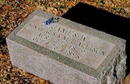 ALLISON, JAMES W. - Sutton County, Texas | JAMES W. ALLISON - Texas Gravestone Photos