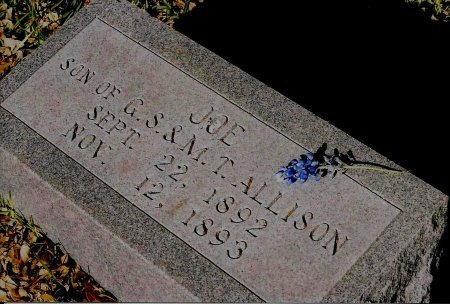 ALLISON, JOE - Sutton County, Texas   JOE ALLISON - Texas Gravestone Photos