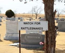 *CEMETERY VIEW,  - Swisher County, Texas |  *CEMETERY VIEW - Texas Gravestone Photos