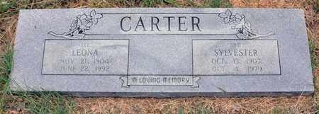 CARTER, SYLVESTER SAM - Tarrant County, Texas | SYLVESTER SAM CARTER - Texas Gravestone Photos