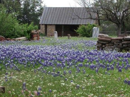 *BUFFALO GAP OVERVIEW,  - Taylor County, Texas |  *BUFFALO GAP OVERVIEW - Texas Gravestone Photos