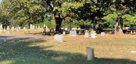 *OVERVIEW,  - Titus County, Texas    *OVERVIEW - Texas Gravestone Photos