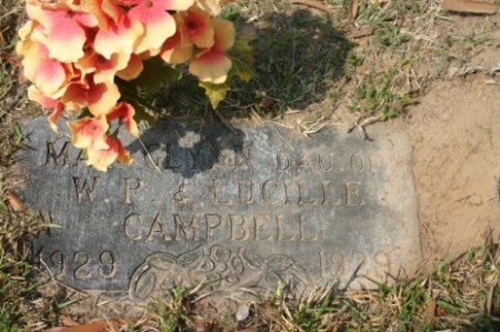 CAMPBELL, MARY GLYN - Titus County, Texas | MARY GLYN CAMPBELL - Texas Gravestone Photos