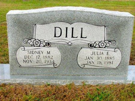 DILL, SIDNEY M - Titus County, Texas | SIDNEY M DILL - Texas Gravestone Photos