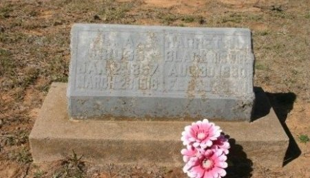 BLACK GROSS, HARRETT L - Titus County, Texas | HARRETT L BLACK GROSS - Texas Gravestone Photos
