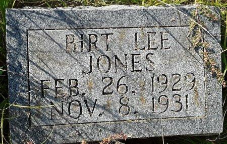 JONES, BIRT LEE - Titus County, Texas | BIRT LEE JONES - Texas Gravestone Photos