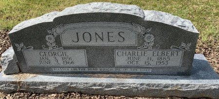 JONES, GEORGIE - Titus County, Texas | GEORGIE JONES - Texas Gravestone Photos