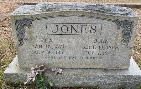 JONES, JOHN - Titus County, Texas | JOHN JONES - Texas Gravestone Photos