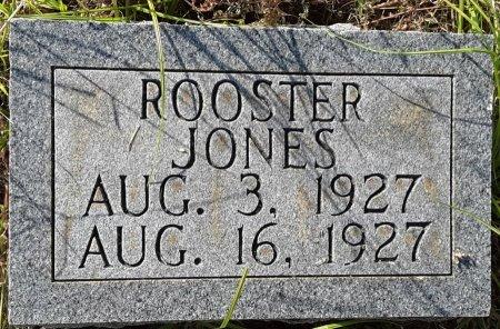 JONES, ROOSTER - Titus County, Texas | ROOSTER JONES - Texas Gravestone Photos
