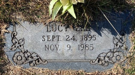 LEE, LUCY - Titus County, Texas | LUCY LEE - Texas Gravestone Photos