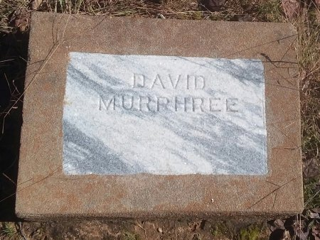 MURPHREE, DAVID - Titus County, Texas | DAVID MURPHREE - Texas Gravestone Photos