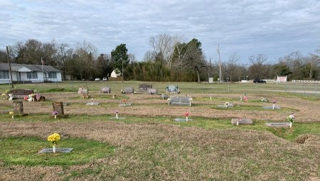 *OVERVIEW,  - Titus County, Texas |  *OVERVIEW - Texas Gravestone Photos