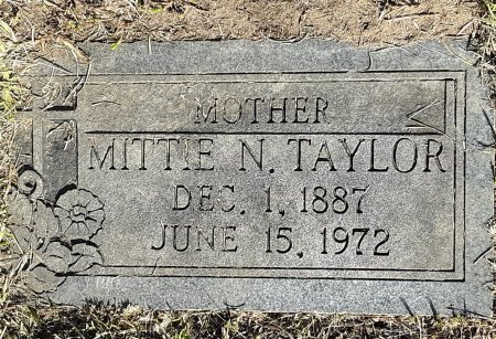 TAYLOR, MITTIE N - Titus County, Texas | MITTIE N TAYLOR - Texas Gravestone Photos