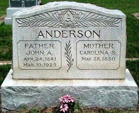 ANDERSON, CAROLINA S. - Travis County, Texas | CAROLINA S. ANDERSON - Texas Gravestone Photos