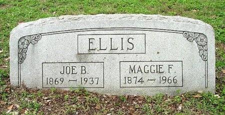 ELLIS, MAGGIE FRANCES - Travis County, Texas   MAGGIE FRANCES ELLIS - Texas Gravestone Photos