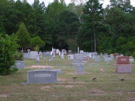 *OVERVIEW,  - Upshur County, Texas |  *OVERVIEW - Texas Gravestone Photos
