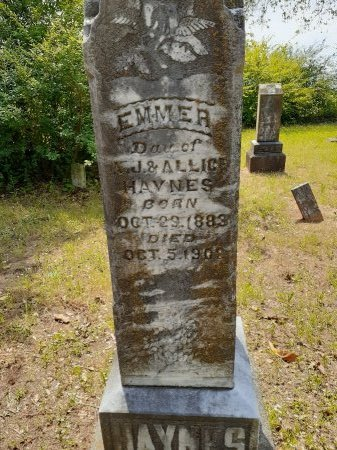 HAYNES, EMMER - Van Zandt County, Texas | EMMER HAYNES - Texas Gravestone Photos