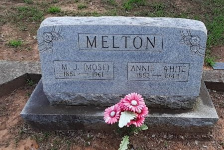 MELTON, ANNIE - Van Zandt County, Texas | ANNIE MELTON - Texas Gravestone Photos
