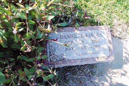 BARNES, DANIEL J. - Wharton County, Texas | DANIEL J. BARNES - Texas Gravestone Photos