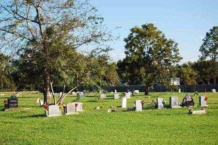 *OVERVIEW,  - Wharton County, Texas    *OVERVIEW - Texas Gravestone Photos