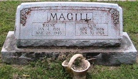 MAGILL, WAYNE - Williamson County, Texas | WAYNE MAGILL - Texas Gravestone Photos