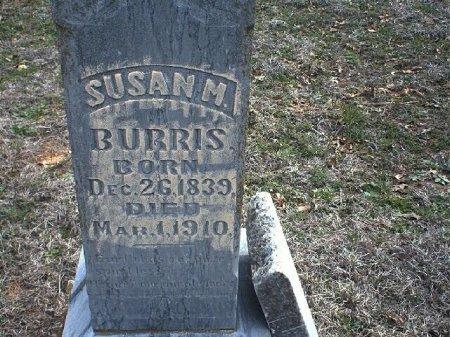 HINES BURRIS, SUSAN MATILDA - Wise County, Texas | SUSAN MATILDA HINES BURRIS - Texas Gravestone Photos