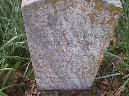 BIGHAM, LIBBY JANE - Wood County, Texas | LIBBY JANE BIGHAM - Texas Gravestone Photos