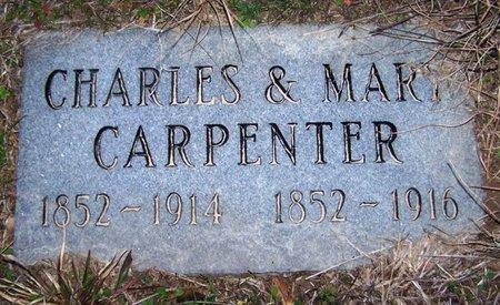 CARPENTER, MARY - Wood County, Texas | MARY CARPENTER - Texas Gravestone Photos