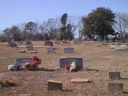 *OVERVIEW,  - Wood County, Texas |  *OVERVIEW - Texas Gravestone Photos