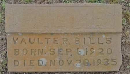 BILLS, VAULTER - Young County, Texas | VAULTER BILLS - Texas Gravestone Photos