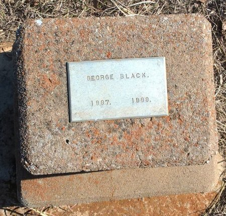 BLACK, GEORGE - Young County, Texas | GEORGE BLACK - Texas Gravestone Photos