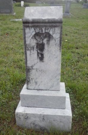 BLAKNEY, ANNIE - Young County, Texas | ANNIE BLAKNEY - Texas Gravestone Photos