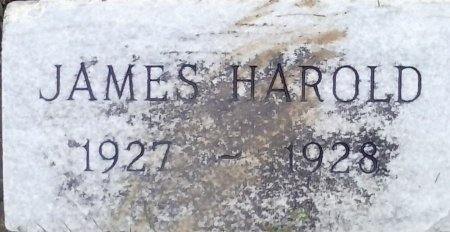 BUTLER, JAMES HAROLD - Young County, Texas | JAMES HAROLD BUTLER - Texas Gravestone Photos