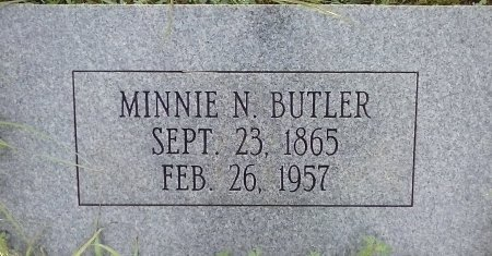 "CLARK BUTLER, MINNIE NANCY ""MINNA"" - Young County, Texas 