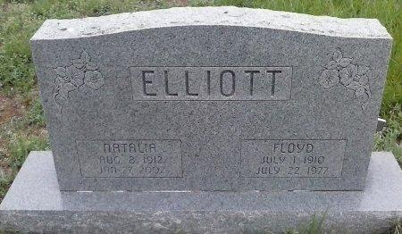 ELLIOT, NATALIA - Young County, Texas | NATALIA ELLIOT - Texas Gravestone Photos