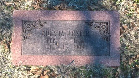 FORD FOSTER, GEORGIA  ADEMIA - Young County, Texas | GEORGIA  ADEMIA FORD FOSTER - Texas Gravestone Photos