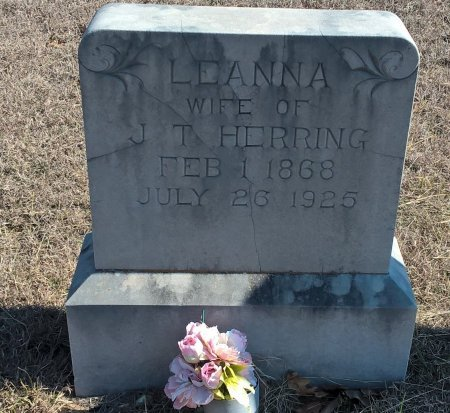 HERRING, LEANNA PARALEE - Young County, Texas | LEANNA PARALEE HERRING - Texas Gravestone Photos