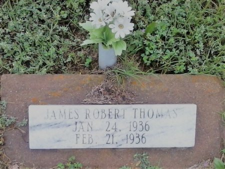 THOMAS, JAMES ROBERT - Young County, Texas | JAMES ROBERT THOMAS - Texas Gravestone Photos