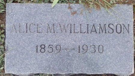 WILLIAMSON, ALICE M - Young County, Texas | ALICE M WILLIAMSON - Texas Gravestone Photos