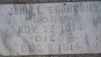 BRONSON, JOHN LEWIS - Box Elder County, Utah | JOHN LEWIS BRONSON - Utah Gravestone Photos