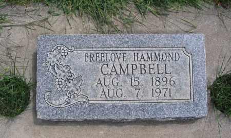 CAMPBELL, FREELOVE - Cache County, Utah | FREELOVE CAMPBELL - Utah Gravestone Photos
