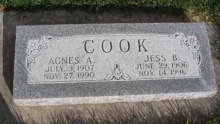ASTLE COOK, AGNES - Cache County, Utah | AGNES ASTLE COOK - Utah Gravestone Photos