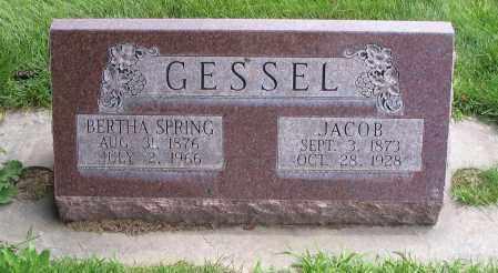 SPRING GESSEL, BERTHA - Cache County, Utah | BERTHA SPRING GESSEL - Utah Gravestone Photos